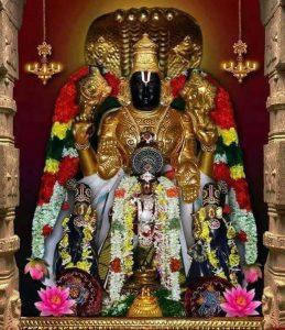 Pavalavannaperumal,Thirupavalavannam,Kanchipuram