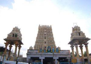 Thiruvikrama swamy, Thirukovilur, Viluppuram.
